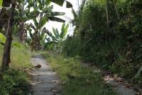 Road2 (1024x683)